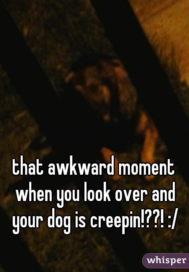 that awkward moment when you look over and your dog is creepin!??! :/