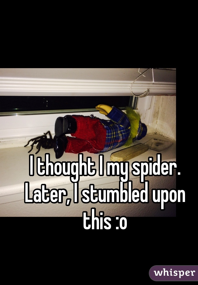 I thought I my spider. Later, I stumbled upon this :o