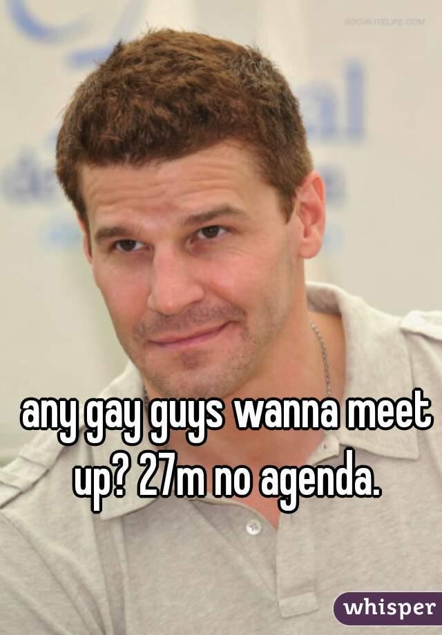any gay guys wanna meet up? 27m no agenda.