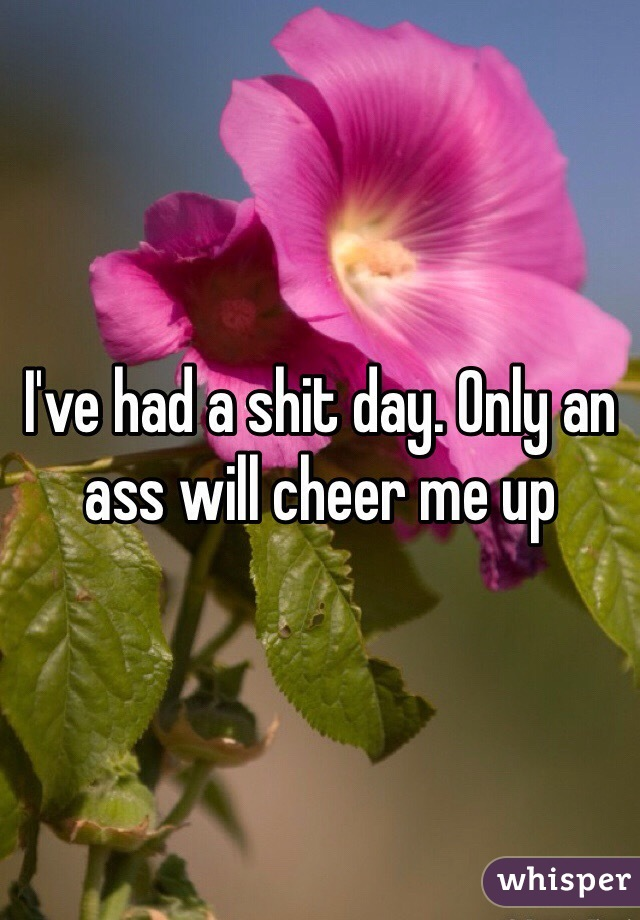 I've had a shit day. Only an ass will cheer me up