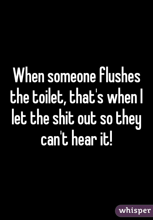 When someone flushes the toilet, that's when I let the shit out so they can't hear it!