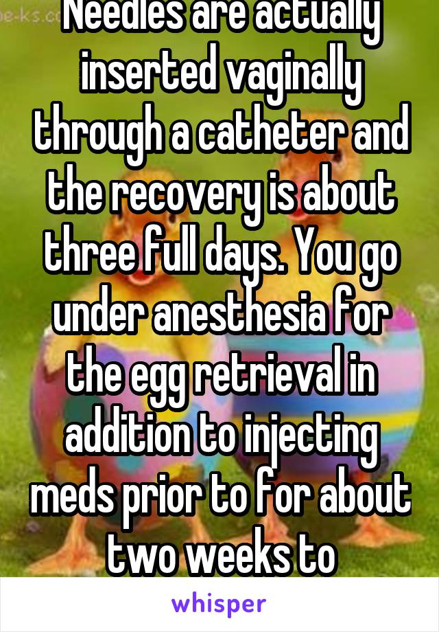 Needles are actually inserted vaginally through a catheter and the recovery is about three full days. You go under anesthesia for the egg retrieval in addition to injecting meds prior to for about two weeks to stimulate egg growth.