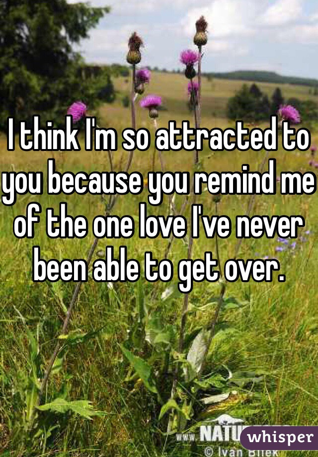 I think I'm so attracted to you because you remind me of the one love I've never been able to get over.