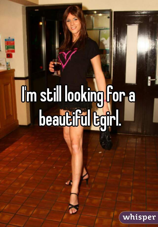 I'm still looking for a beautiful tgirl.