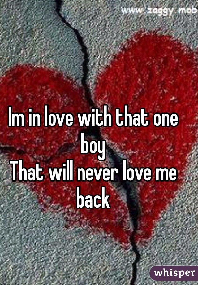 Im in love with that one boy  That will never love me back