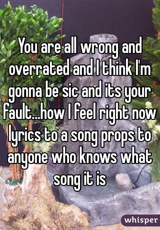 You are all wrong and overrated and I think I'm gonna be sic and its your fault...how I feel right now lyrics to a song props to anyone who knows what song it is
