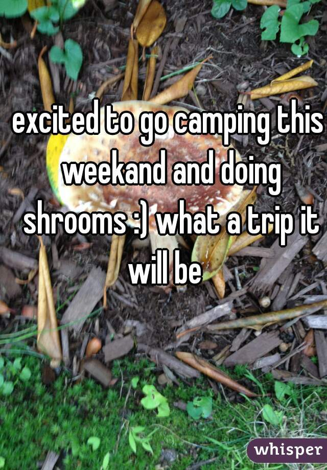 excited to go camping this weekand and doing shrooms :) what a trip it will be