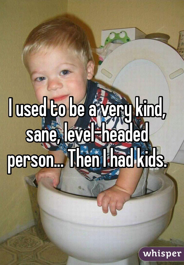 I used to be a very kind, sane, level-headed person... Then I had kids.