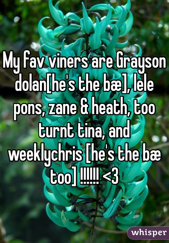 My fav viners are Grayson dolan[he's the bæ], lele pons, zane & heath, too turnt tina, and weeklychris [he's the bæ too] !!!!!! <3