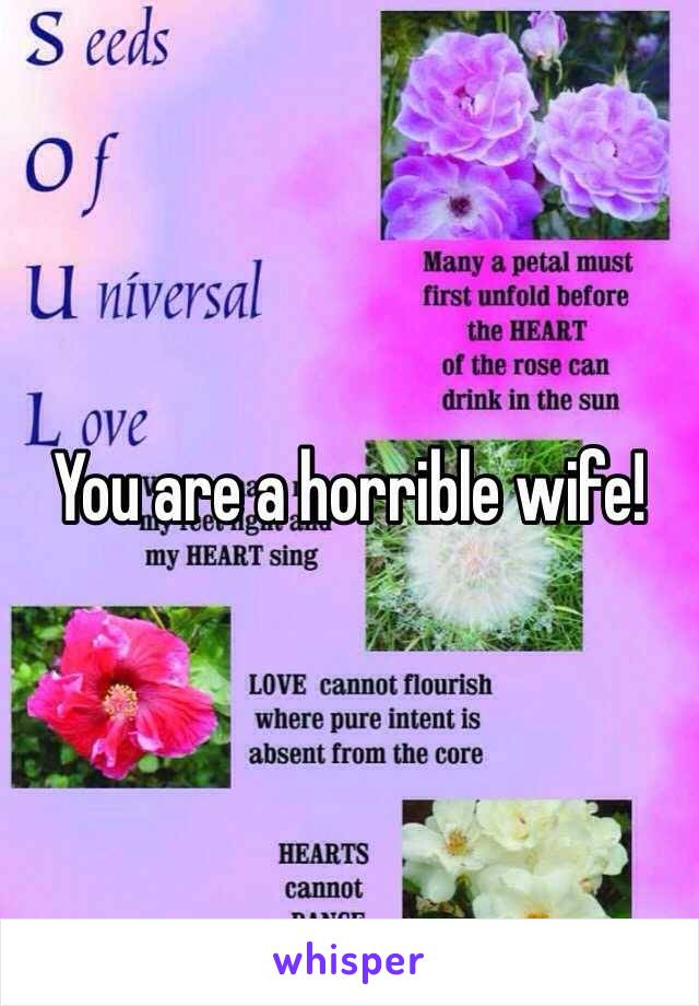 You are a horrible wife!