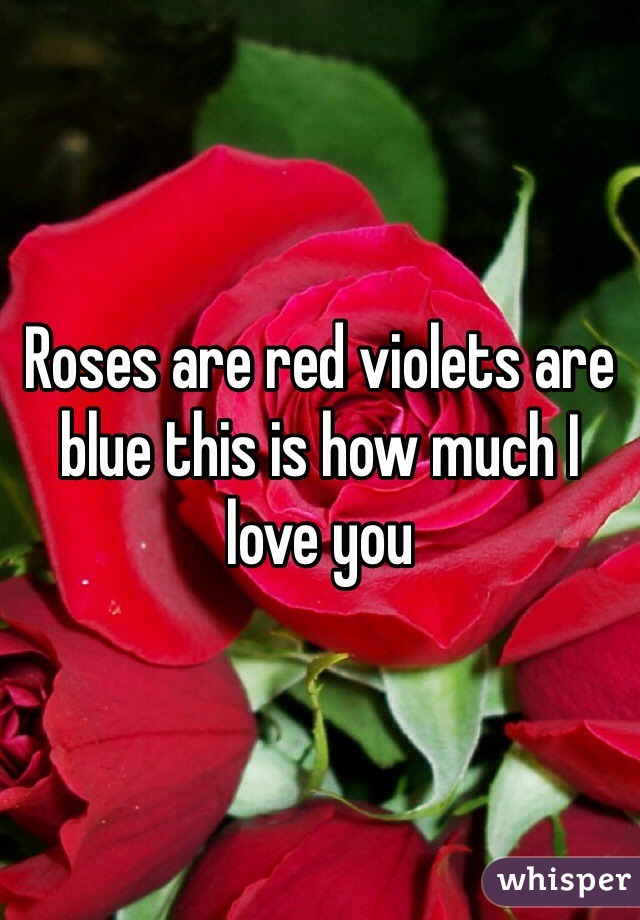 Roses are red violets are blue this is how much I love you