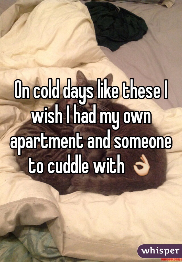 On cold days like these I wish I had my own apartment and someone to cuddle with 👌