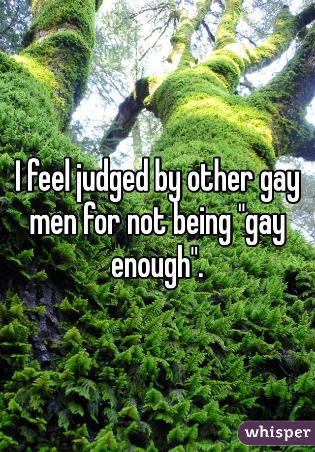 """I feel judged by other gay men for not being """"gay enough""""."""