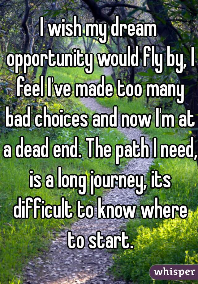 I wish my dream opportunity would fly by, I feel I've made too many bad choices and now I'm at a dead end. The path I need, is a long journey, its difficult to know where to start.
