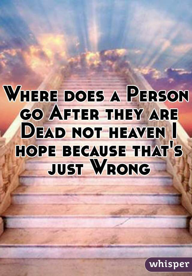 Where does a Person go After they are Dead not heaven I hope because that's just Wrong
