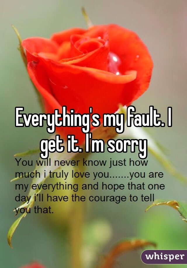 Everything's my fault. I get it. I'm sorry