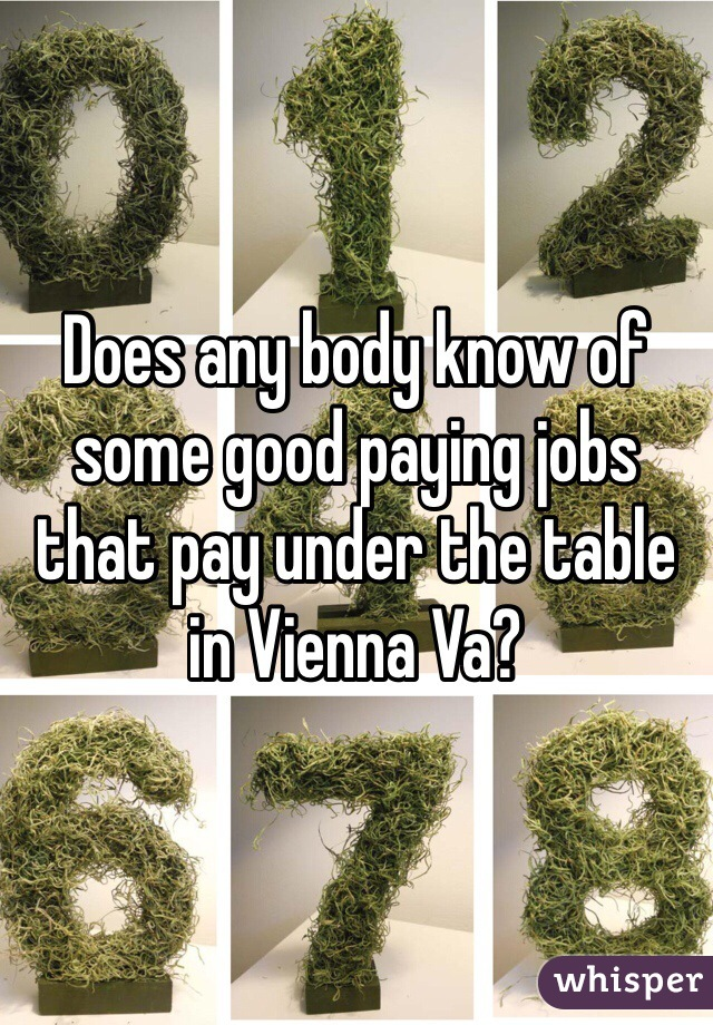 Does any body know of some good paying jobs that pay under the table in Vienna Va?