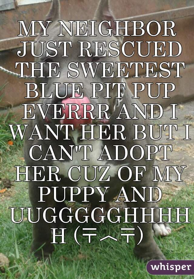 MY NEIGHBOR JUST RESCUED THE SWEETEST BLUE PIT PUP EVERRR AND I WANT HER BUT I CAN'T ADOPT HER CUZ OF MY PUPPY AND UUGGGGGHHHHH (〒︿〒)