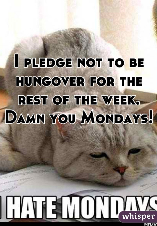 I pledge not to be hungover for the rest of the week. Damn you Mondays!