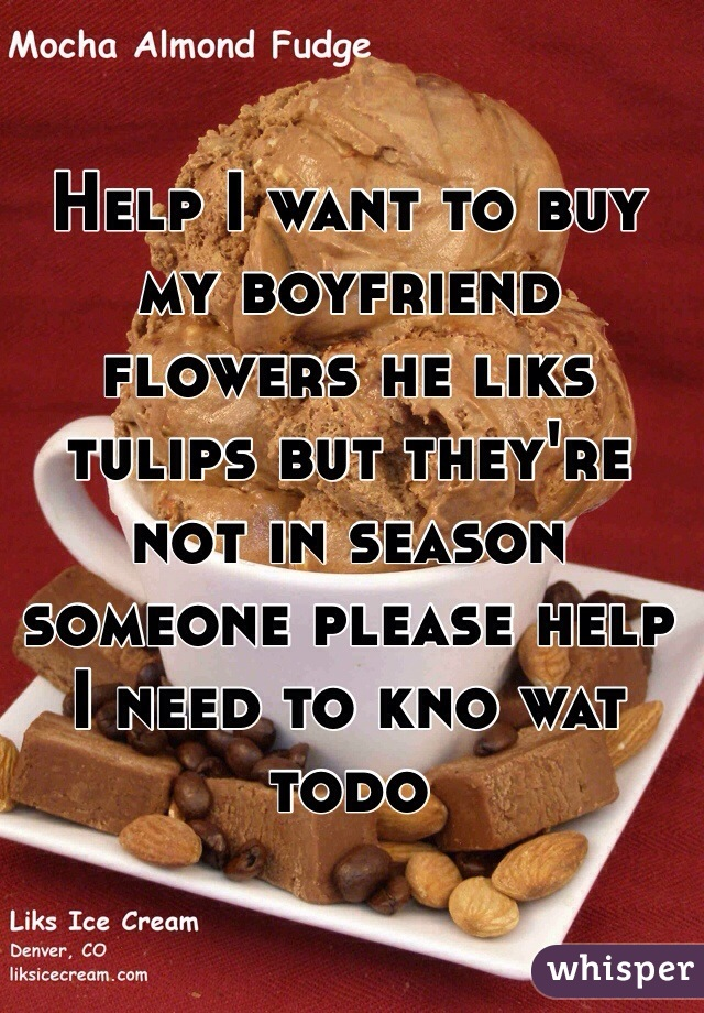 Help I want to buy my boyfriend flowers he liks tulips but they're not in season someone please help I need to kno wat todo