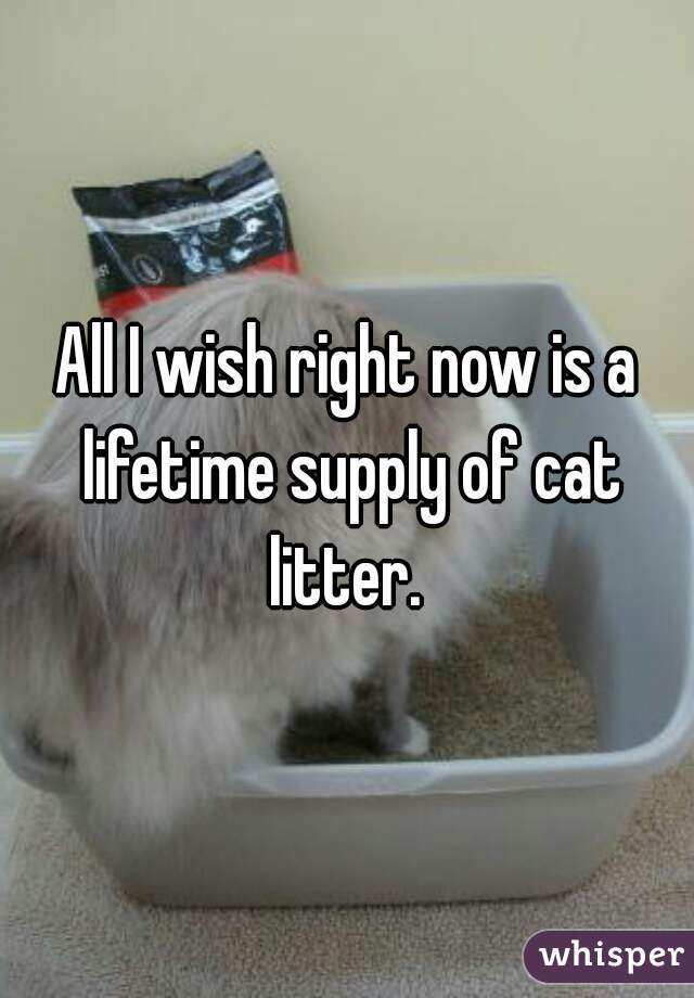 All I wish right now is a lifetime supply of cat litter.