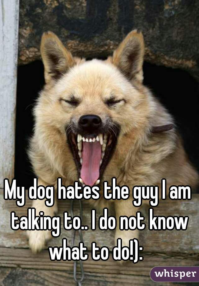 My dog hates the guy I am talking to.. I do not know what to do!):