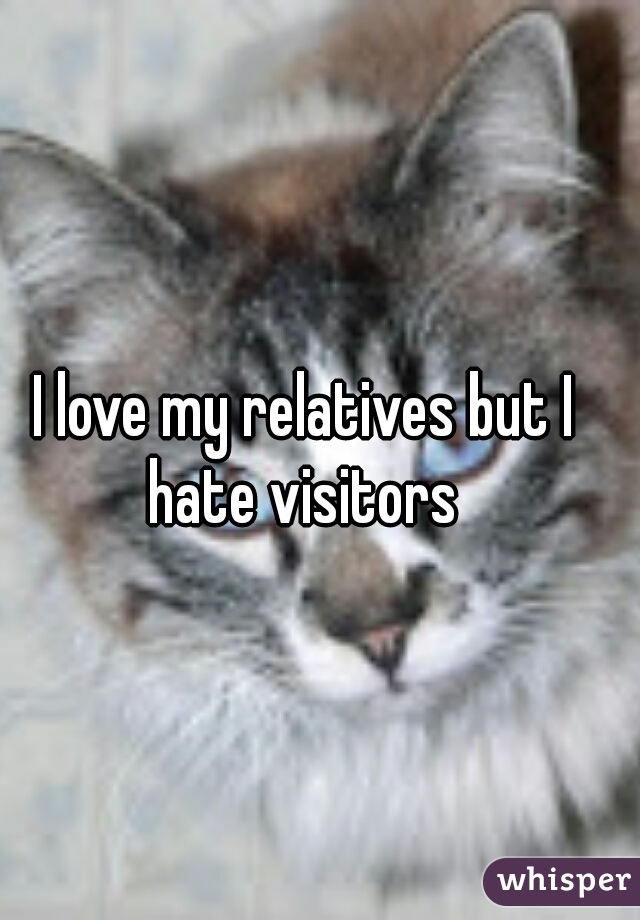 I love my relatives but I hate visitors