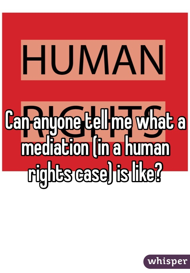 Can anyone tell me what a mediation (in a human rights case) is like?