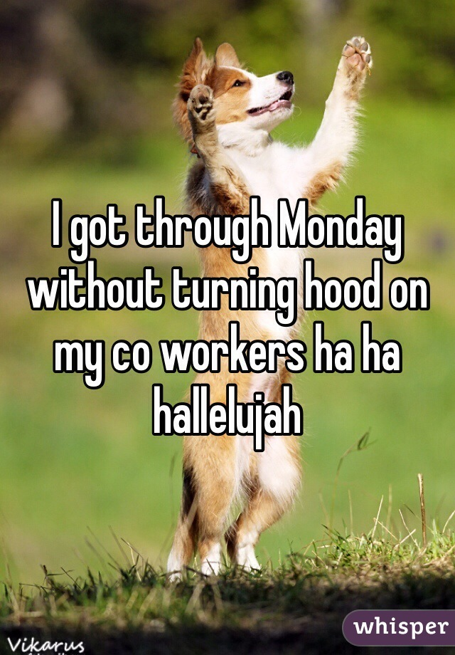 I got through Monday without turning hood on my co workers ha ha hallelujah