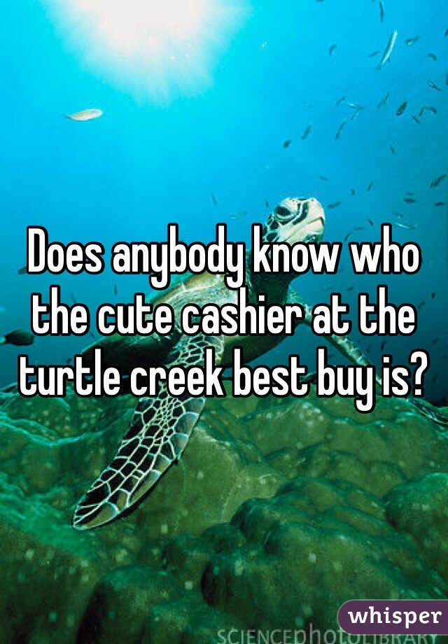Does anybody know who the cute cashier at the turtle creek best buy is?