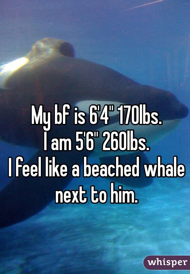"My bf is 6'4"" 170lbs. I am 5'6"" 260lbs.  I feel like a beached whale next to him."