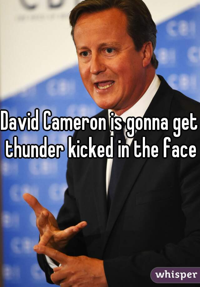David Cameron is gonna get thunder kicked in the face