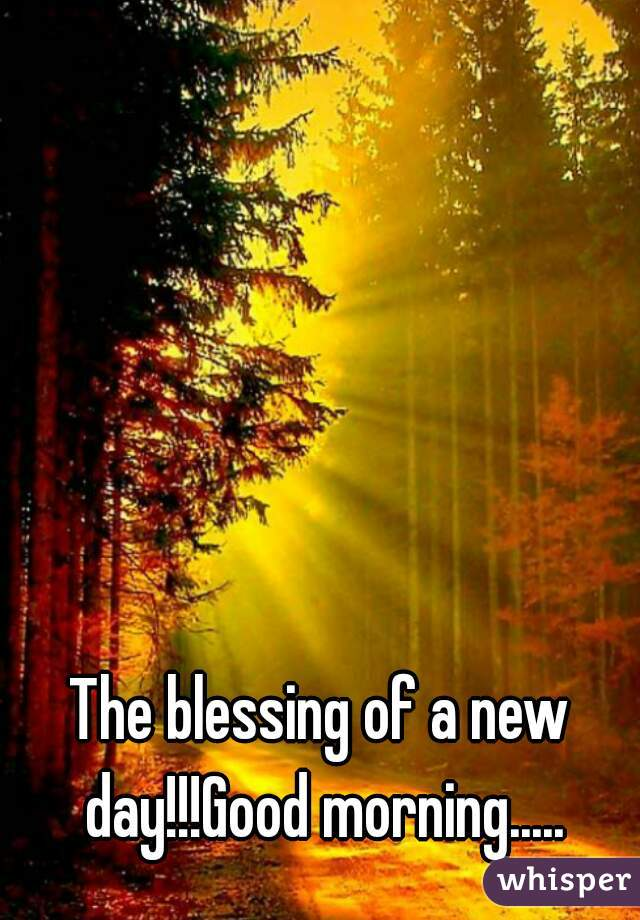 The blessing of a new day!!!Good morning.....