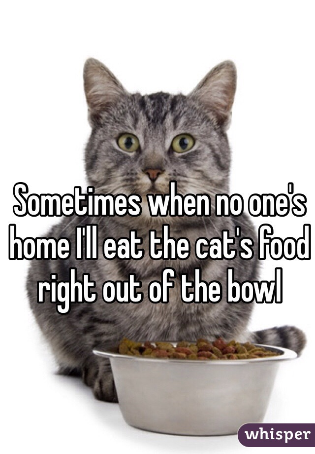 Sometimes when no one's home I'll eat the cat's food right out of the bowl