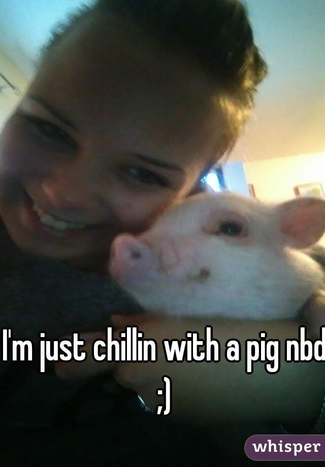 I'm just chillin with a pig nbd ;)