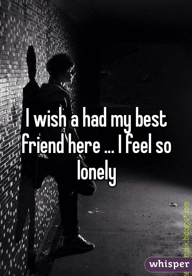 I wish a had my best friend here ... I feel so lonely