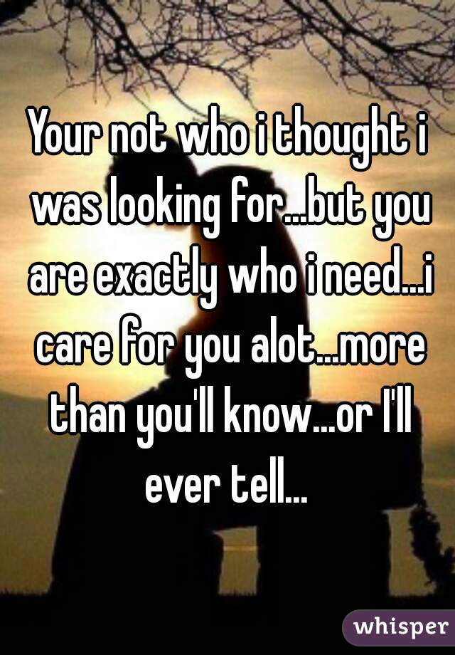 Your not who i thought i was looking for...but you are exactly who i need...i care for you alot...more than you'll know...or I'll ever tell...