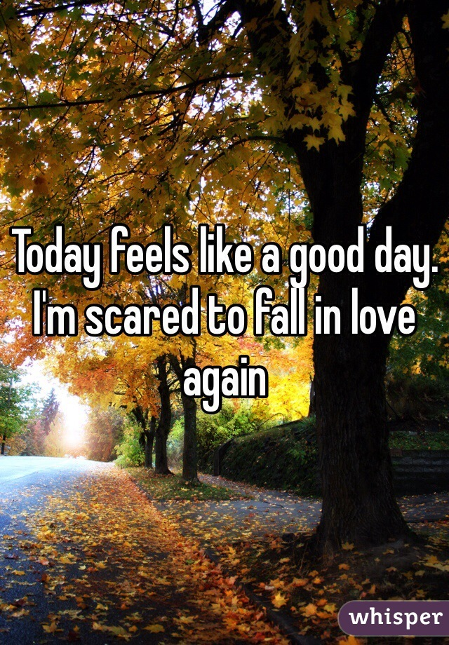 Today feels like a good day. I'm scared to fall in love again