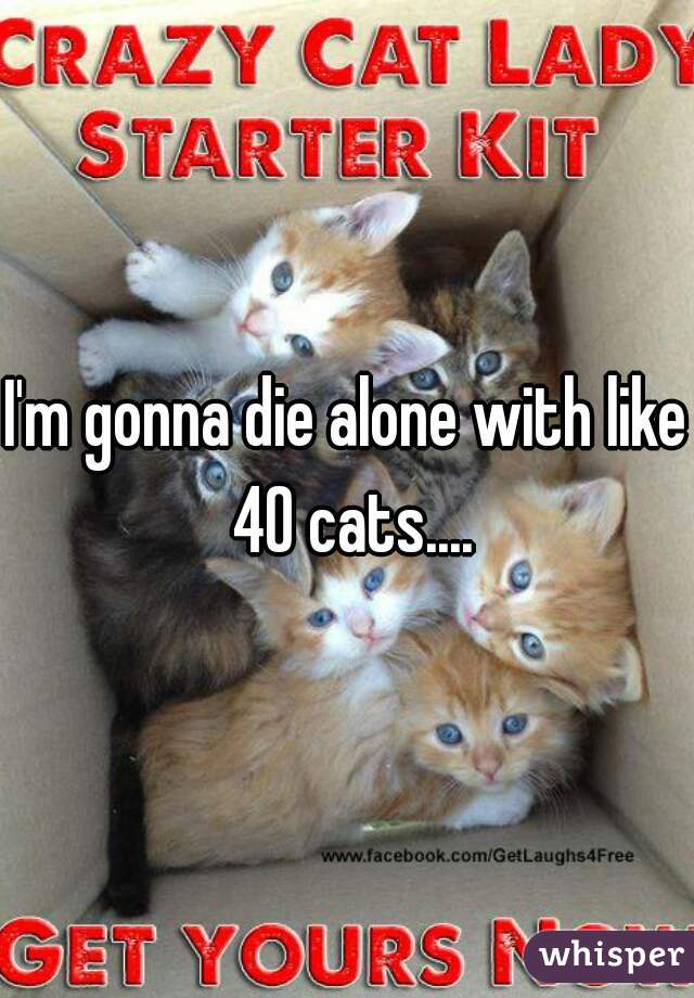 I'm gonna die alone with like 40 cats....