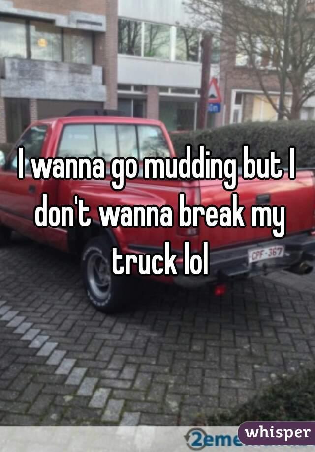 I wanna go mudding but I don't wanna break my truck lol