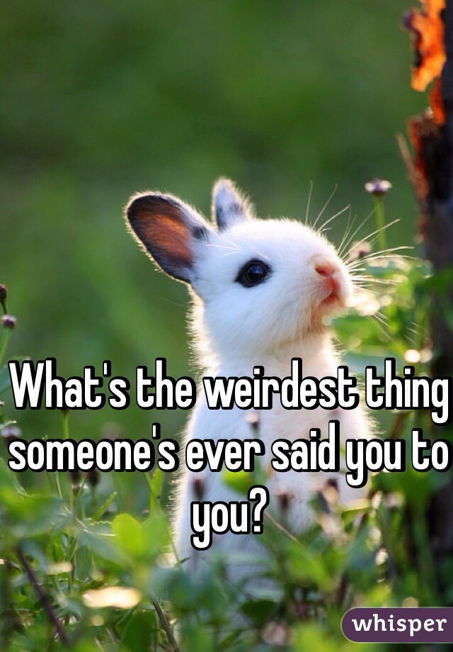 What's the weirdest thing someone's ever said you to you?