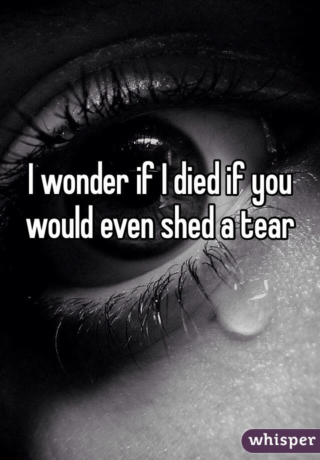 I wonder if I died if you would even shed a tear