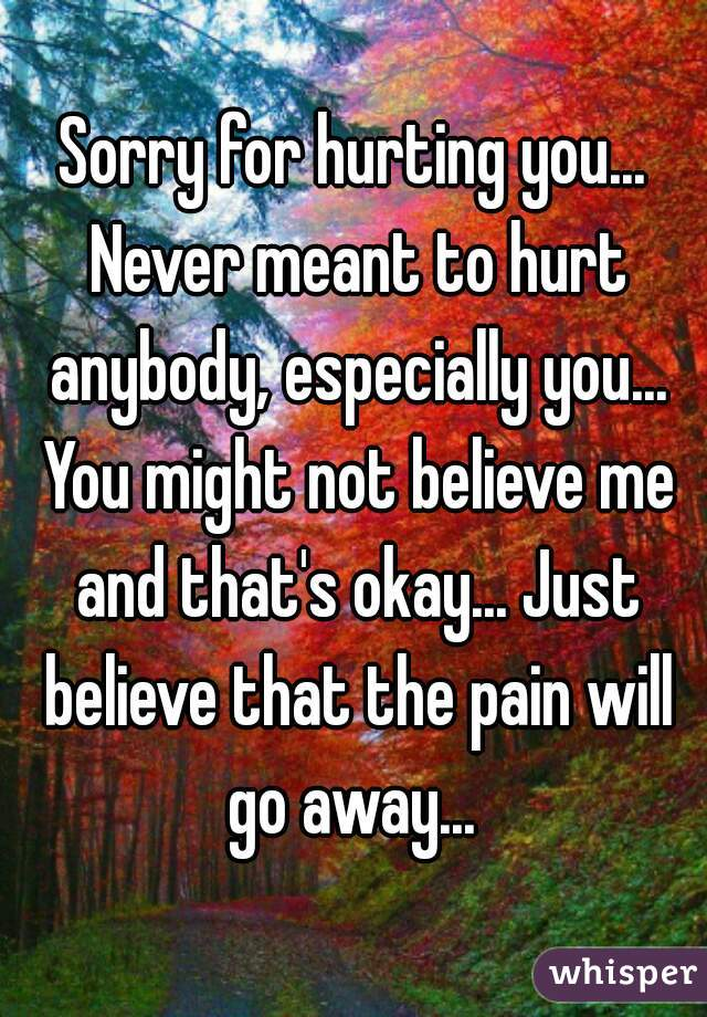 Sorry for hurting you... Never meant to hurt anybody, especially you... You might not believe me and that's okay... Just believe that the pain will go away...