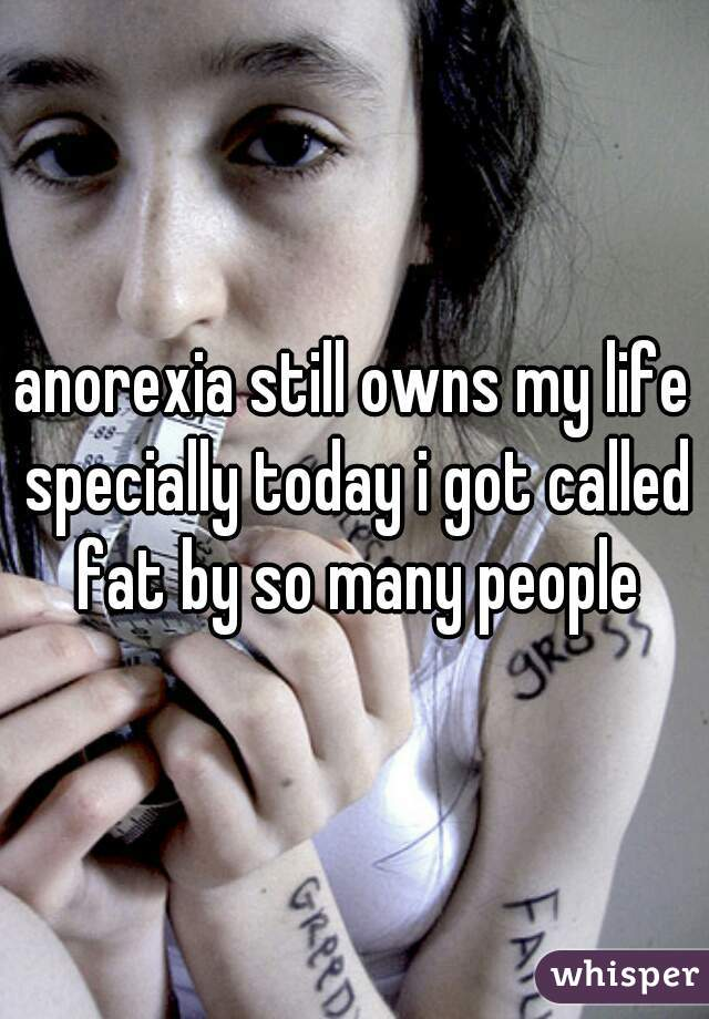 anorexia still owns my life specially today i got called fat by so many people