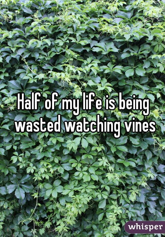 Half of my life is being wasted watching vines