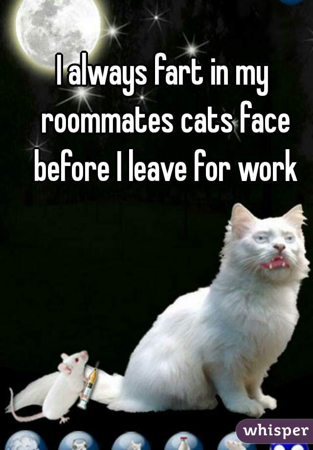 I always fart in my roommates cats face before I leave for work
