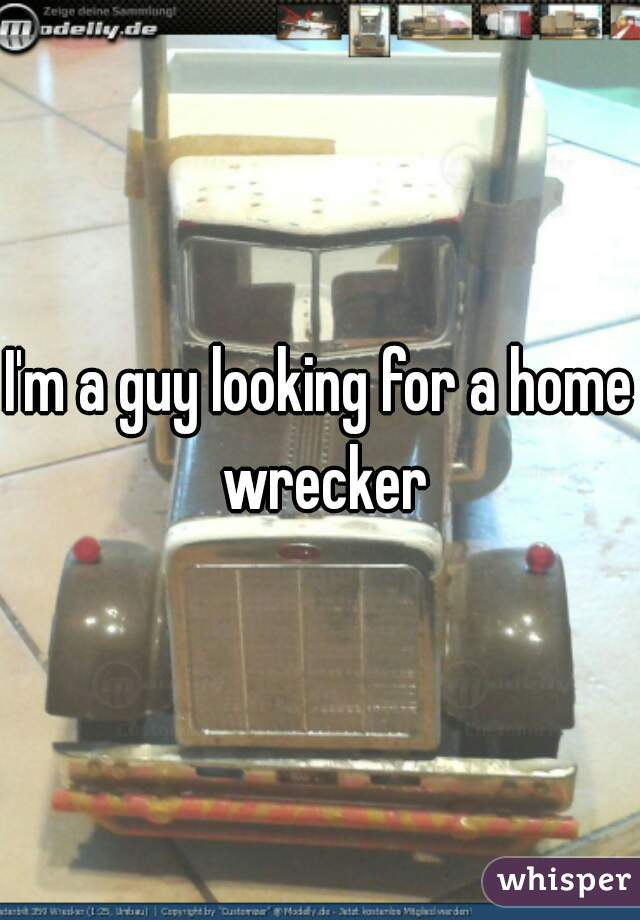 I'm a guy looking for a home wrecker