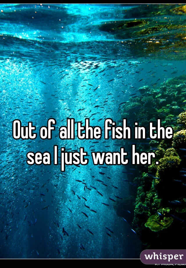Out of all the fish in the sea I just want her.