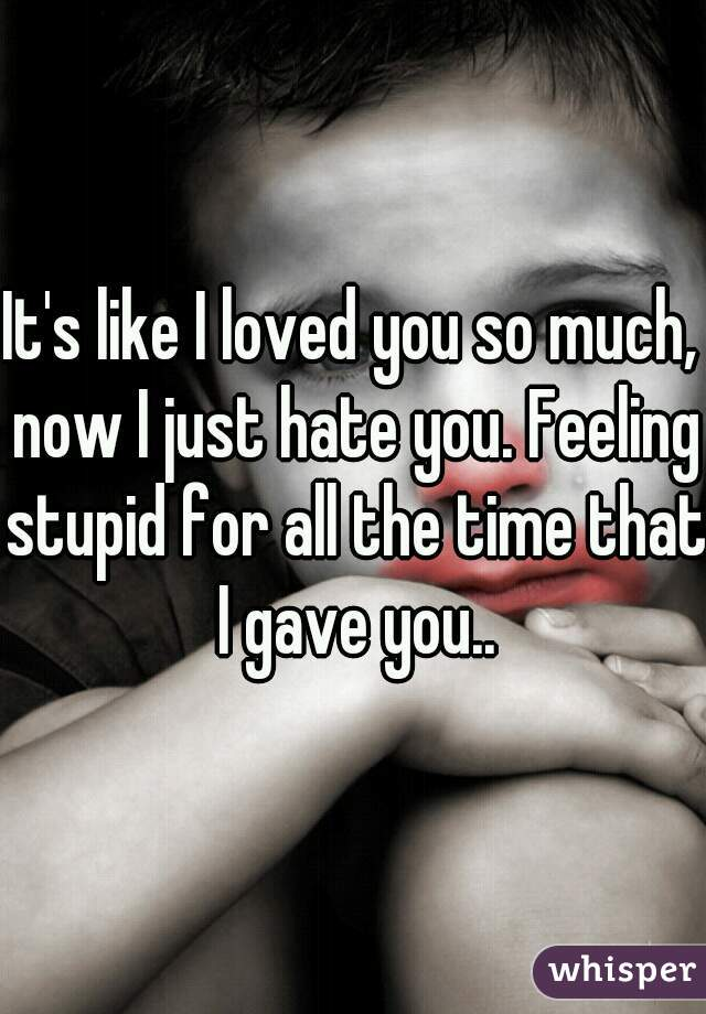 It's like I loved you so much, now I just hate you. Feeling stupid for all the time that I gave you..