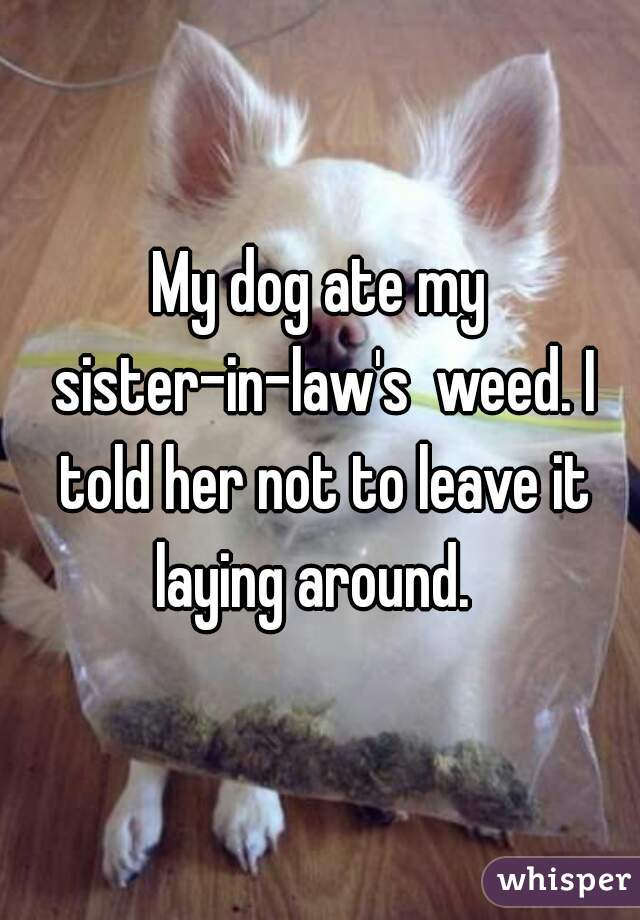 My dog ate my sister-in-law's  weed. I told her not to leave it laying around.
